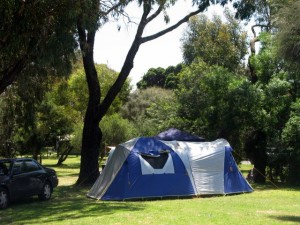 Area for tents and camping